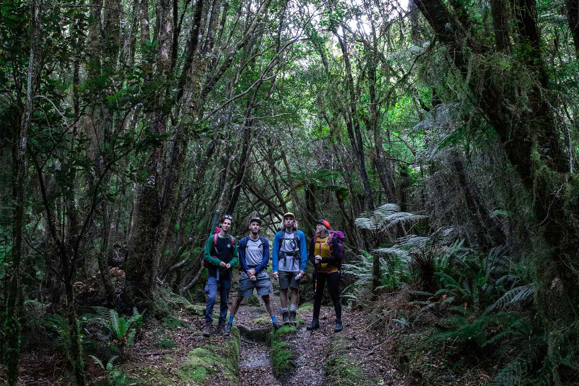 Hikers pose for a photo on the Copland Track in New Zealand